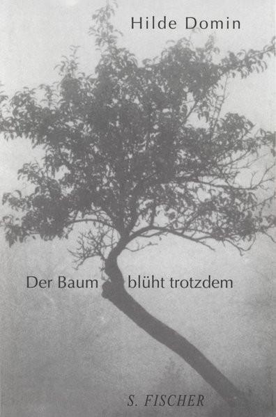 Der Baum blüht trotzdem