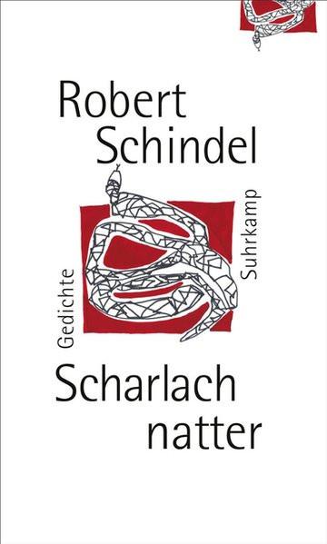 Scharlachnatter